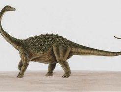 eggeskall fra dinosaur