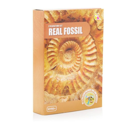 Fossilutgravingssett