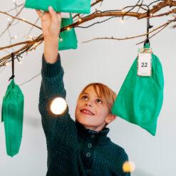 Julekalender fra Forskerfabrikken
